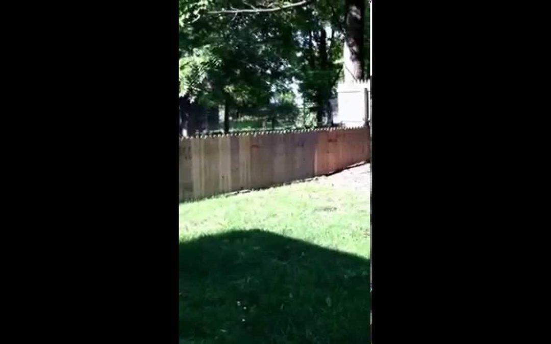Stella bekommt einen neuen Zaun
